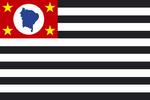 Bandeira do estado de São Paulo.png