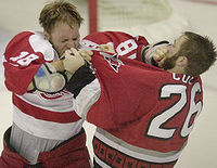 Hockey fight.jpg