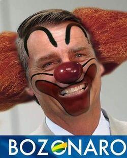 BOZONARO.jpg
