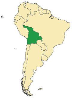 Bolivia Acre Arica.jpg