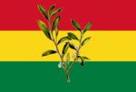 Bandeira da Bolivia.png