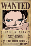 Robin-Wanted.jpg