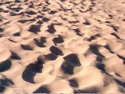Areia2.jpg