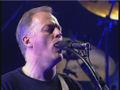 David Gilmour Pulse.jpg