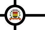 Bandeira santos.jpg