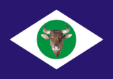 Bandeiramatogrosso.png