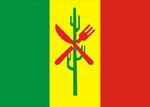 Bandeira de Petrolina.png