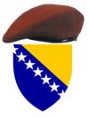 Brasao da Bosnia e Herzegovina.png