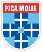 Escudo do PEC Zwolle.png