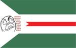 Bandeira de Rio Verde.png