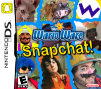 WarioWare Snapped-fanmadebox.png