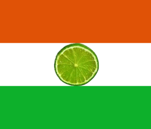 Bandeira do Niger.png