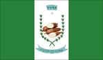Bandeira de Viçosa do Ceará.png