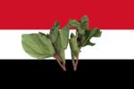 Bandeira do Iemen (khat).png