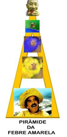 Evolução do vírus da Febre Amarela