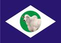 Bandeira de Mato Grosso do Norte