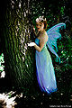Jessia fairy.jpg