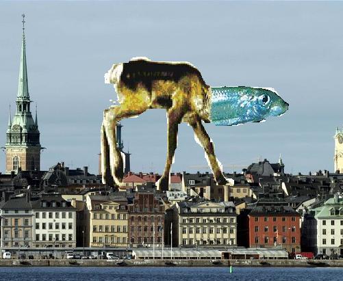 Sillkalv i stockholm.JPG