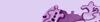 Wbar purple2.jpg