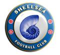 Shellsea'ปัจจุบัน, 2006-ปัจจุบัน