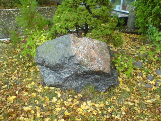 Файл:Stone1.JPG
