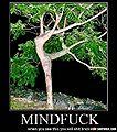 Mindfuck-tree.jpg