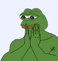 4 - Worried Pepe.png