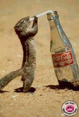 Coca-cola-kuso182.jpg