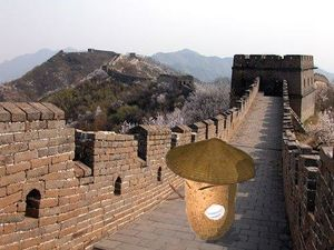 Wielki mur kartofel.jpg