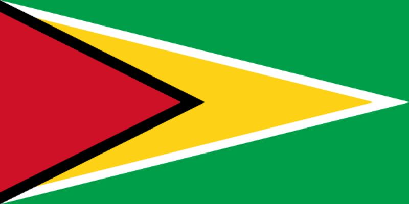 檔案:Флаг Гайана.png