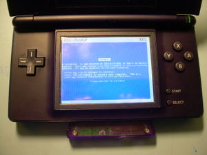 BSOD on NDS.JPG