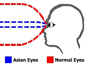 Eyes Diagram.jpg