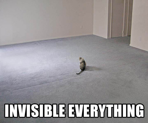 Invisibleeverythinglolcat.jpg