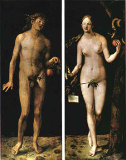 Durer Adam and Eve s.jpg