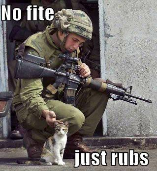 Funny-pictures-soldier-and-cat.jpg