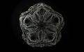 's vampyric amulet.png