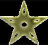 GoldNinjaStar.png