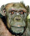 George Bushie.jpg