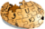 Puzzle Potato Dry Brush-notext.png
