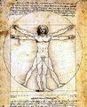 Da-Vinci-Man-in-circle.jpg