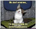 Funny-pictures-cat-thinks-he-is-better-than-you.jpg