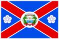 Bandeira de Flor?nia-RN, Brasil.png