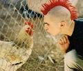 Galo punk.jpg