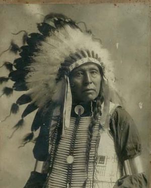 Indian Chief with Head Dress copy.jpg