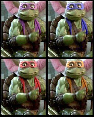 Turtle 42.jpg