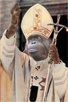 Ape Pope.jpg