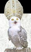 OwlPope.jpg