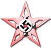 Offensive star.jpg