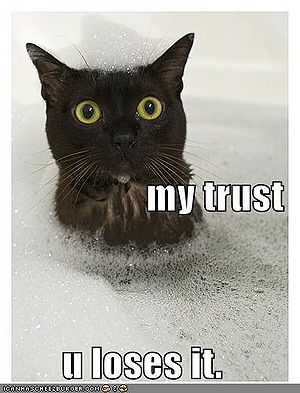 Funny-pictures-cat-bubble-bath-trust.jpg