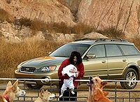 Michael Jackson demonstrating the proper way to feed dingoes.